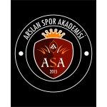 Arslan Spor Akademisi